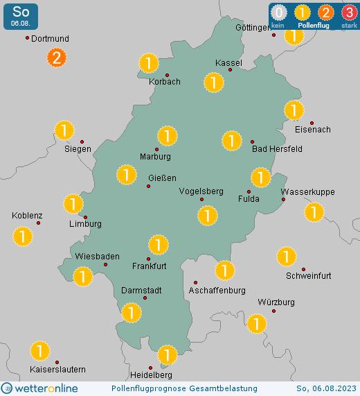 Pollenflugkalender Hessen