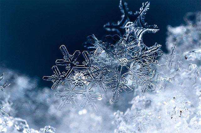 Schneeflocken unter der Lupe