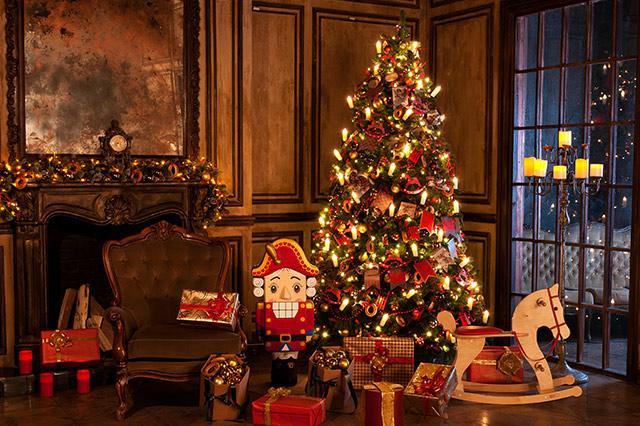 wissenswertes zum weihnachtsbaum fotostrecke wetteronline. Black Bedroom Furniture Sets. Home Design Ideas