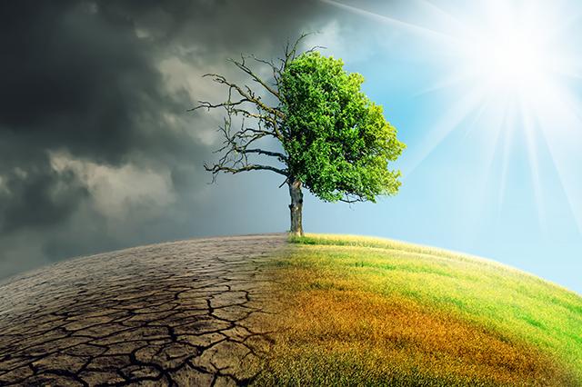 Klimawandel Fakten