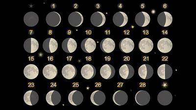 Mondkalender Für Heute